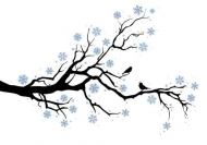 Fototapety NATURA drzewa 10461 mini