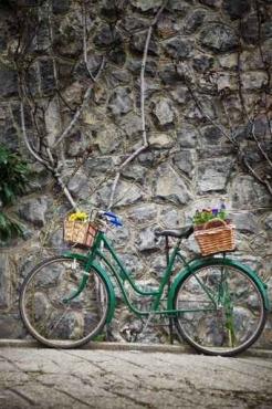 Fototapety ULICZKI rowery 11260