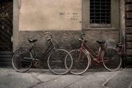 Fototapety ULICZKI rowery 11264 mini