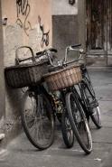 Fototapety ULICZKI rowery 11265 mini