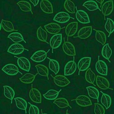 Fototapety KOLORY szmaragd emerald 11899