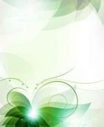 Fototapety KOLORY szmaragd emerald 11912 mini