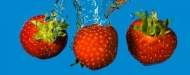 Fototapety PANORAMY KUCHENNE panoramy kuchenne 12110 mini
