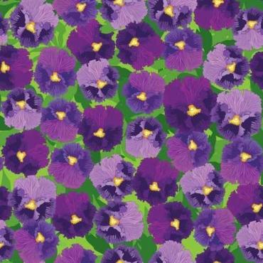 Fototapety KOLORY fiolet 12140