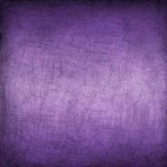Fototapety KOLORY fiolet 12157 mini