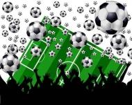 Fototapety SPORT piłka nożna 14241 mini