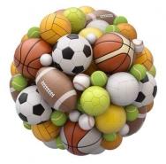 Fototapety SPORT piłka nożna 14244 mini
