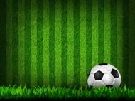 Fototapety SPORT piłka nożna 14246 mini