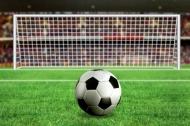 Fototapety SPORT piłka nożna 14253 mini