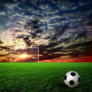 Fototapety SPORT piłka nożna 14259 mini