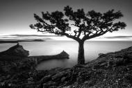 Fototapety FOTOTAPETY CZARNO BIAŁE Fototapety czarno białe 15146 mini