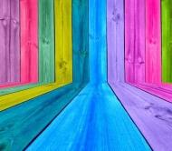Fototapety GRAFICZNE paleta barw 1715 mini