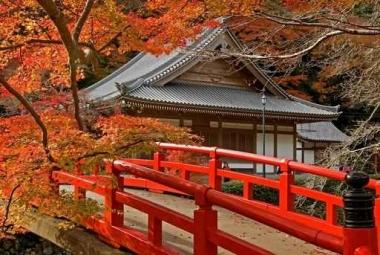 Fototapety JAPONIA japonia 2024