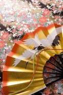 Fototapety JAPONIA japonia 2059 mini