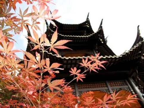 Fototapety JAPONIA japonia 2108-big