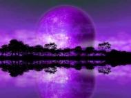 Fototapety KOSMOS planety 2195 mini