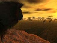Fototapety ZWIERZĘTA dzikie koty 4003 mini