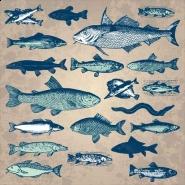 Fototapety ZWIERZĘTA życie pod wodą 4329 mini