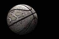 Fototapety SPORT koszykówka 5048 mini