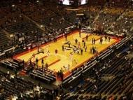 Fototapety SPORT koszykówka 5049 mini