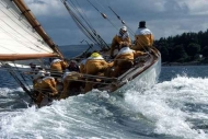 Fototapety SPORT pływanie 5166 mini