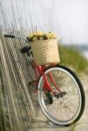 Fototapety ULICZKI rowery 5234 mini