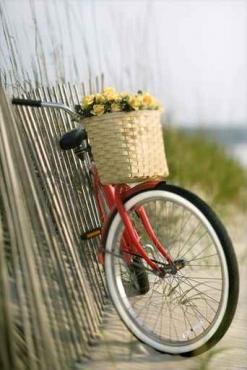 Fototapety ULICZKI rowery 5234