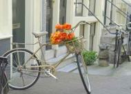 Fototapety ULICZKI rowery 5235 mini
