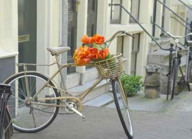 Fototapety ULICZKI rowery 5235