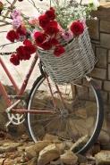 Fototapety ULICZKI rowery 5236 mini