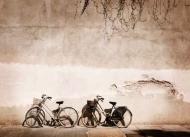 Fototapety ULICZKI rowery 5240 mini