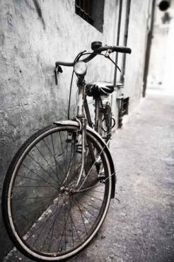 Fototapety ULICZKI rowery 5244
