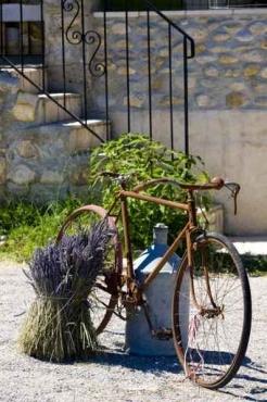 Fototapety ULICZKI rowery 5246