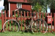 Fototapety ULICZKI rowery 5248 mini