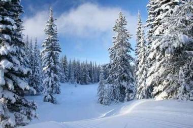 Fototapety PEJZAŻ zima 5587