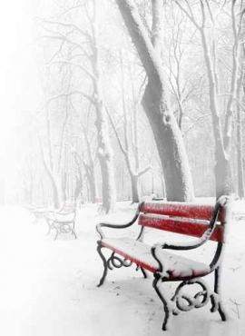 Fototapety PEJZAŻ zima 5589