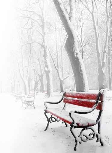 Fototapety PEJZAŻ zima 5589-big