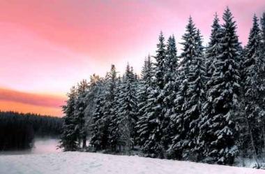 Fototapety PEJZAŻ zima 5590
