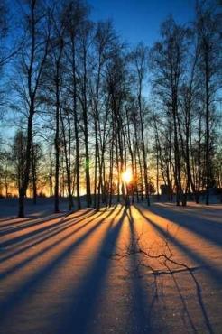 Fototapety PEJZAŻ zima 5591