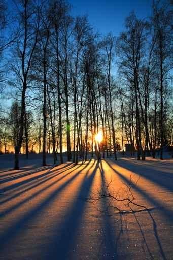 Fototapety PEJZAŻ zima 5591-big