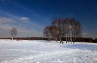 Fototapety PEJZAŻ zima 5594 mini