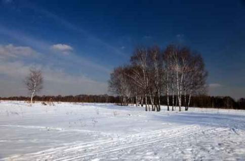 Fototapety PEJZAŻ zima 5594-big