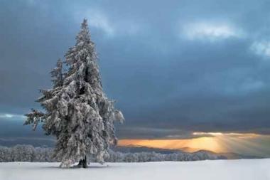 Fototapety PEJZAŻ zima 5595