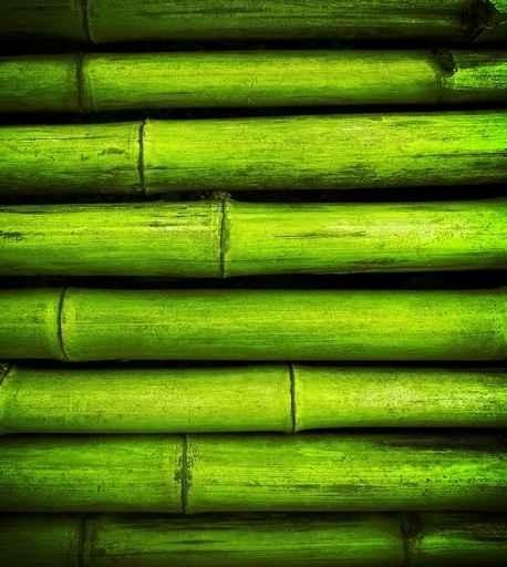 Fototapety NATURA bambusy 6547-big