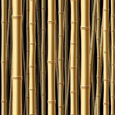Fototapety NATURA bambusy 6548
