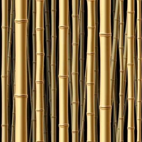 Fototapety NATURA bambusy 6548-big