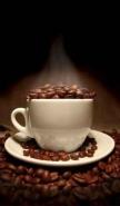 Fototapety DO KUCHNI herbata i kawa time 795 mini