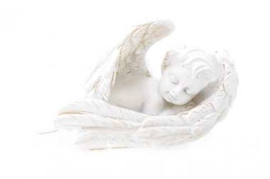 Fototapety INNE rzeźby 8417