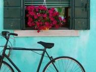 Fototapety ULICZKI rowery 8515 mini