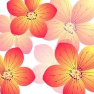 Fototapety KWIATY żółte 8607 mini
